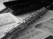 Флейта ученическая новая